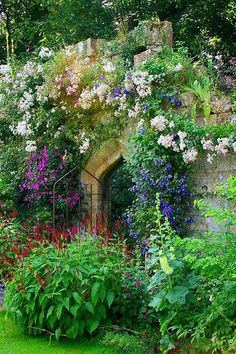 Secret garden gate I want a garden with a gate just like this!