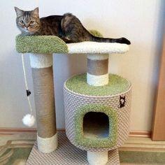 Casas de gatos por las que las mascotas estarán infinitamente agradecidos! Cat Tree Condo, Cat Condo, Diy Cat Tower, Pet Beds, Dog Bed, Cat Gym, Cat Playground, Pets 3, Cat Scratcher