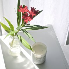 home & away collection candles II Light . Home And Away, Breathe, Essential Oils, Relax, Candles, Natural, Tableware, Collection, Dinnerware