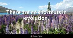 There are no shortcuts in evolution. - Louis D. Brandeis #brainyquote #QOTD #evolution #life