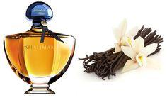 Resultado de imagem para fotos de perfumes gourmet