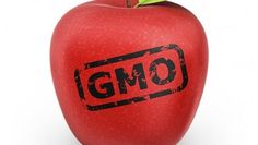 GMO-Cancer-CausingFoods [(Pazoo.c)代碼:PZOO]