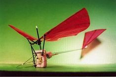 Ornithopter_Researchers_Forum