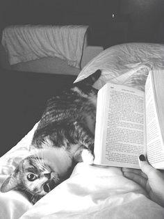 Beautiful combination | via Tumblr