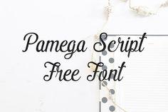 DLOLLEYS HELP: Pamega Script Free Font
