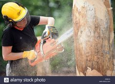 Download this stock image: A womanm treats a trunk with a chainsaw to make art in Extertal, Germany, 28 May 2010. Women are trained in the so-called 'Carving'technique to form sculptures from wood. Photo:Oliver Krato - D59010 from Alamy's library of millions of high resolution stock photos, illustrations and vectors.