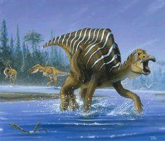 Resultados de la Búsqueda de imágenes de Google de http://planetdi.startlogic.com/dinosaur_list/images/maiasaura.gif