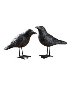 Take a look at this Crow Figurine Set on zulily today!