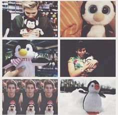 Luke and his penguins