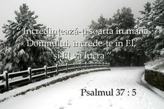 versete420 Psalm 37, Blessed, God, Outdoor, Beautiful, Dios, Outdoors, Allah, Outdoor Games