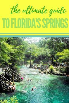Spring hop across central Florida! Florida Springs, Florida Keys, Florida Usa, Visit Florida, Florida Travel, Florida Beaches, Travel Usa, Central Florida, Destin Florida