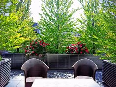 Lush Roof Garden with Contemporary Planters - contemporary - patio - new york - Amber Freda Home & Garden Design