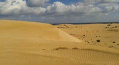 Dunas de #Corralejo
