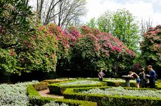 gardens of Serralves (Porto, Portugal) (27)