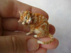 OOAK Realistic  Grooming Ginger Tabby Cat by OREON dollhouse scale 1:12