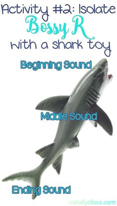 Need some activities to teach those r-controlled vowels? This post is full of many ideas and is very informative. I love this idea of building phonemic awareness with a shark toy! Anchor Activities, Word Work Activities, Phonics Activities, Reading Activities, Educational Activities, Teaching Reading, Fun Learning, Team Activities, Reading Stations