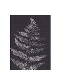 Print Fern grey