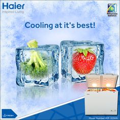 #Haier's #DeepFreezer works comfortably during hot #summers, keeping your products cool and fresh. #Technology #Appliance #HaierIndia #InspiredLiving #CommercialFreezer