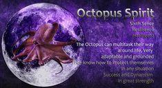 Animal Spirit Guides, Spirit Animal, Power Animal, Healing Meditation, Octopus, Mystic, Scorpion, Animals, Scorpio
