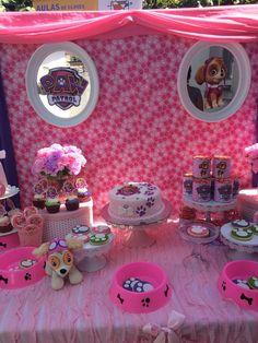 Paw Patrol skype Birthday Party Ideas   Photo 1 of 16
