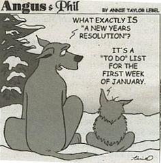 What is a New Year Resolution?
