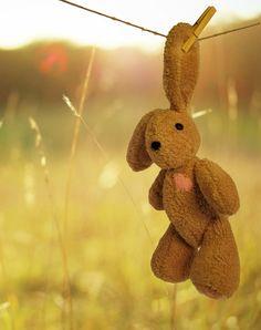 Hand sewn plush bunny BAM ;)