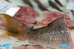 Συναγρίδα του Πσαρά – ολόκληρη, ή σε ουρά! Φρέσκια, ψητή, η γεύση της συναγρίδας μας, είναι πάντα ξεχωριστή! ☎️ Delivery: 2310232228 Θέλετε το ψάρι σας μαγειρεμένο;; Τώρα στον «Πσαρά»!