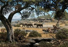 This picture depicts how the region of Cerro de los Batallones in central Spain likely looked 9 million years ago (Mauricio Antón). The three largest mammalian predators (smaller sabre-tooth, large cat, and bear-dog) captured prey in different portions of the habitat, as do coexisting large predators today.