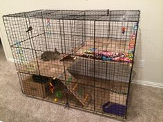 NIC bunny condo Not as good looking as wood, but cheaper and easier to make/take apart. Diy Bunny Cage, Diy Guinea Pig Cage, Bunny Cages, Rabbit Cages, House Rabbit, Pet Rabbit, Guinea Pigs, Sky E, Bunny Leash