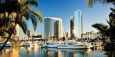 ab 377 € -- Flüge nach Phoenix, San Diego & Tampa, -400 €