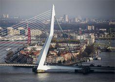 Dichtbij.nl - De 7 meest geniale Rotterdamse uitspraken