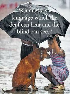 Kindness is a language which the deaf can hear and the blind can see. -Mark Twain #quotes #motivation www.MyPinterestQuotes.com Walking In The Rain, Singing In The Rain, Kindness Matters, Kindness Quotes, Mark Twain, Lamas, Appaloosa, Faith In Humanity, Under My Umbrella
