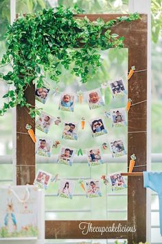 First-year photo banner garden frame from a Beatrix Potter Peter Rabbit Birthday Party on Kara's Party Ideas | KarasPartyIdeas.com (18)