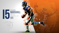Chicago Bears 2014 Wallpapers on Behance