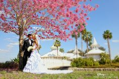 Stunning pink blooming tree outside Disney's Wedding Pavilion