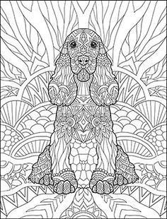 Software to create coloring books