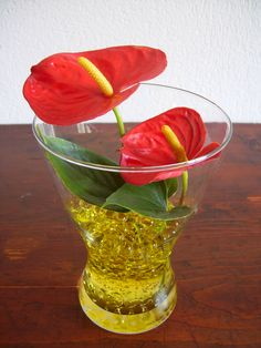 Bubble Anthurium