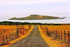 Ruralea: Turismo em espaço rural