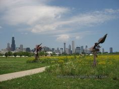 Chicago Northerly Island