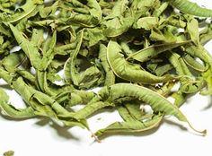 http://2.bp.blogspot.com/-r56n2uiapYE/VLqVg0-YV7I/AAAAAAAAAwc/Q2k6KIXGGgY/s1600/herbs_louiza-1.jpg