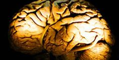 Possible to Erase Bad Memories, Medical Experts
