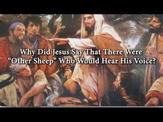"Why Did Jesus Say That There Were ""Other Sheep"" Who Would Hear His Voice? 