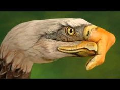 Eagles - I Can't Tell You Why -HD - YouTube