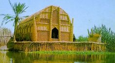 A mudhif is a traditional reed house made by the Madan people (also known as Marsh Arabs) in the swamps of southern Iraq. In the traditional Madan way of living, houses are constructed from reeds harvested from the marshes where they live.