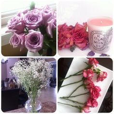 navkbrar: My week in Instagram..blooms and more blooms!
