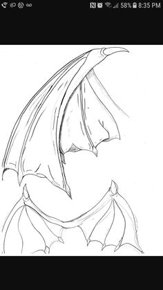 Dragon wings for humans, folded and not, drawing reference