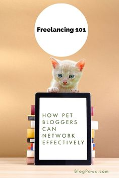 Freelancing 101: Networking For Pet Blogging Success