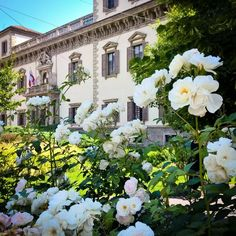 #Milano #Milan #milanocityufficiale #milaninsight #milanodavedere #milanodaclick #milanocityofficial #loves_milano  #igersmilano #ig_milan #cittadimilano #turismomilano #loves_united_lombardia  #igers_lombardia #vivolombardia #volgolombardia #ig_italia #igersitalia #instaitalia #volgoitalia #loves_italia #top_italia_photo #milano_forever #vivomilano  #milanocityitalia #milano_in #ig_europa #topeuropephoto #ig_europe #loves__europe by andrea_gabrielli