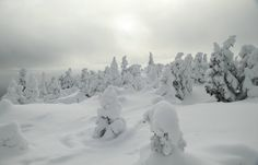 Vallée des fantômes, Monts Valin Snow, Outdoor, Photography, The Great Outdoors, Outdoors, Let It Snow