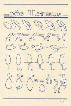 how to draw a bird by suzana